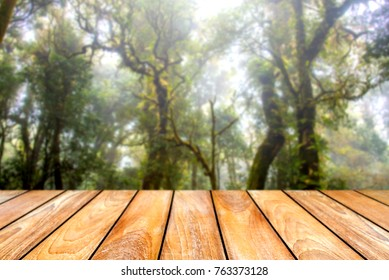Wood table with Green leaves and Forest on the blurred background.