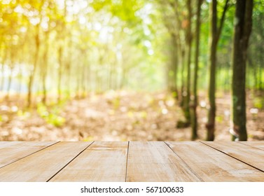 wood table top with focus blur rubber tree background