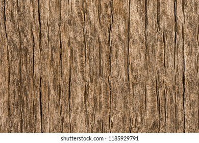Wood texture abstract pattern
