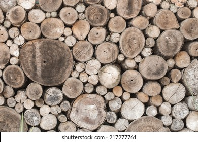 Wood texture background have many log that cut from big tree and small tree