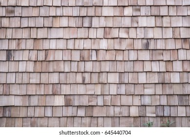 Wood texture background,roof