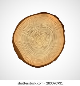 Wood texture of cutted tree trunk, close-up. Color background.