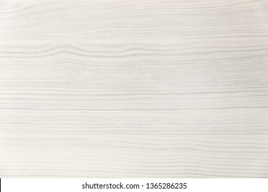 Wood texture. Wood texture for design and decoration. Color white, milk. Fine texture, pattern. Bleached wood. White background.