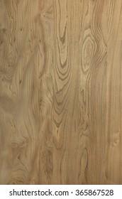 Wood texture elm grain pattern veneer abstract natural background decorative woodgrain image