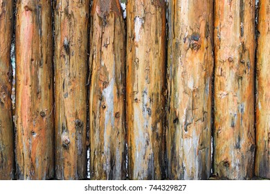 Wood texture. Fence of pine logs, stakes
