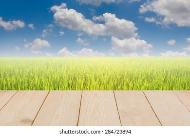 Wood Texture and Green rice field
