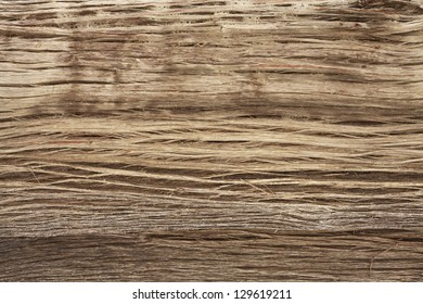 Wood texture of Himalayan tree, Annapurna Region, Nepal