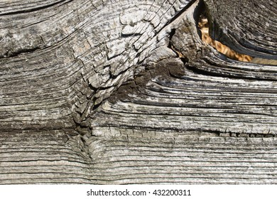 wood texture with natural patterns, old wood with knots