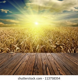 wood textured backgrounds in a room interior on the meadow and field backgrounds