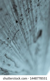 wood textured cement, narrow depth of field with copy space vertical blue black and white