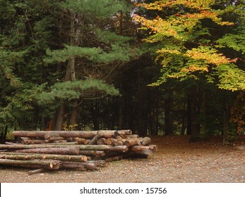 Wood at a Vermont camping site