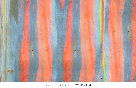 Wood wall texture and background.