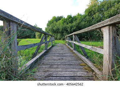 wood way bridge in natural forest