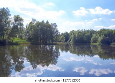 Wood and white clouds in the blue sky reflected in the mirrored water of a lake