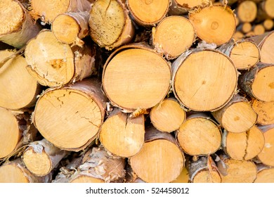 Wood in the woodpile. Close up shot