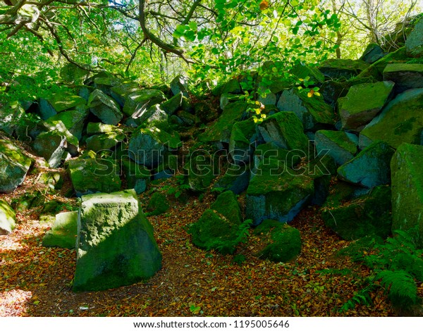 In a woodand in the Derbyshire Dales fallen moss covered rocks bars the way forward