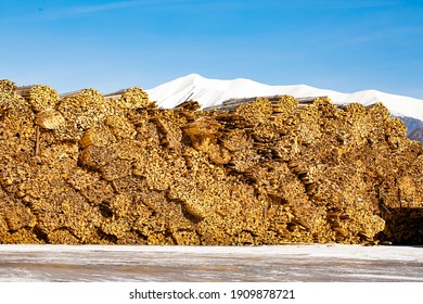 Woodcut of freshly cut lumber awaiting distribution as biomass for heating sezon. Snowy mountains in the background. - Shutterstock ID 1909878721
