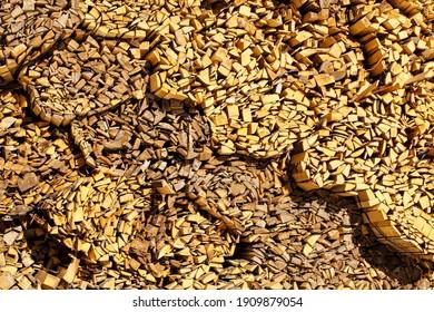 Woodcut of freshly cut lumber awaiting distribution as biomass for heating sezon. Beautiful wooden background. - Shutterstock ID 1909879054