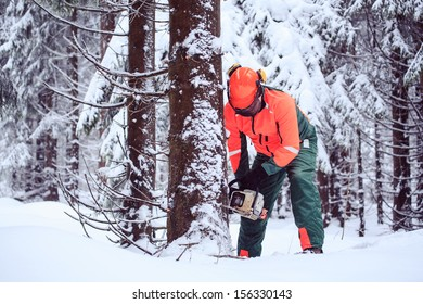 a woodcutter at work in the winter forest