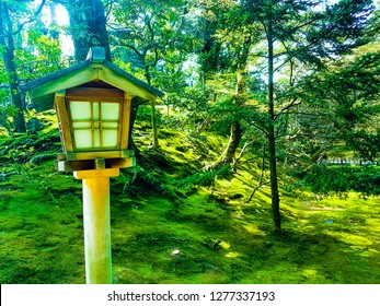 A wooded area within Kenroku-en, Kanazawa during sunshine.