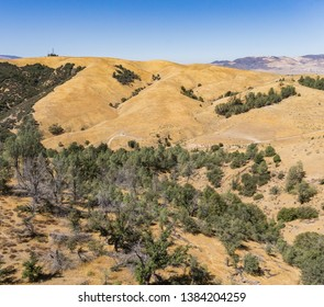 Wooded hills above Bakersfield and Tehachapi California.