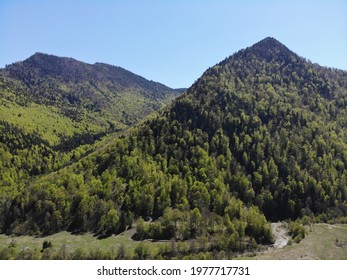 Wooded peaks in the Vrancea mountains, Romania
