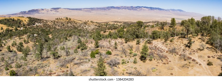Wooded Ridgeline overlooks the edge of the Mojave Desert in California.