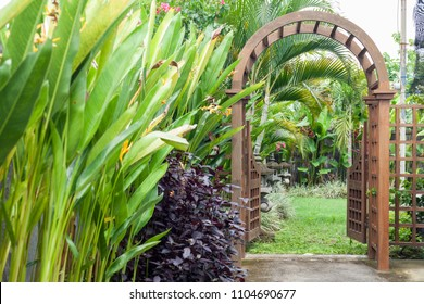 Wooden arbor with gate in garden. Wooden arched entrance to the backyard