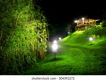 Wooden arbour and green osier at night