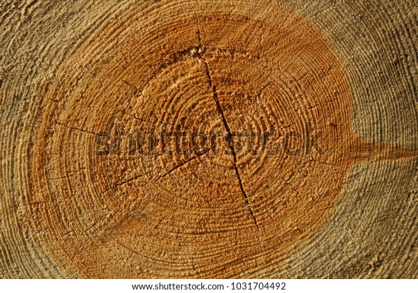 Wooden background, closeup from a three
