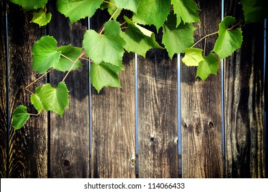 Wooden background with grape leaves