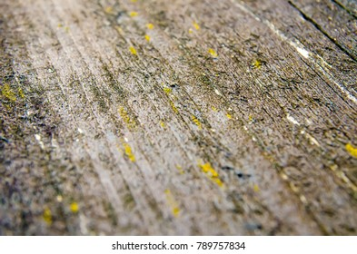 wooden background with perspective closeup