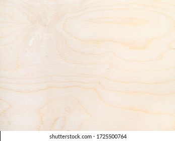 wooden background - surface of plywood from natural birch tree