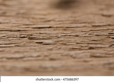 Wooden background / texture