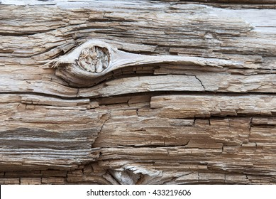 Wooden Background Or Texture With Knothole, Copy Space