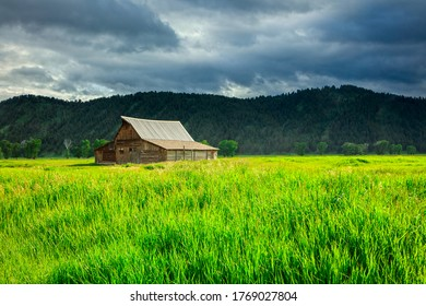 Wooden barn and green field near Hole, Wyoming, USA.