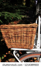 Wooden basket of a bicycle in front of a tree, Munich