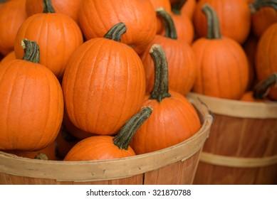 Wooden baskets full of sugar pumpkins.