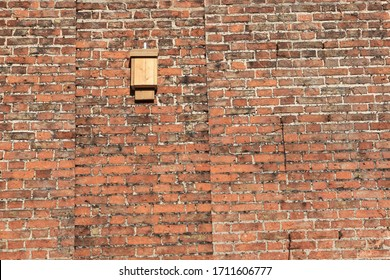 A wooden bat box fixed high on the ancient red brick walls of a walled garden. designed specially to provide roosting sites for bats.
