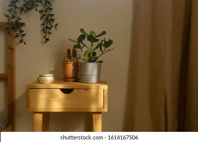 Wooden bedside table next to a bed in a bright bedroom, with plants and cactus and a wicker basket. At home.