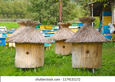 Wooden beehives with straw roof and colored wooden beehives on background.