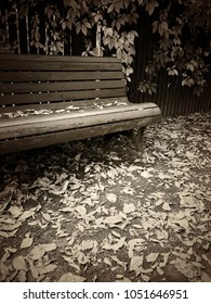Wooden bench in autumn park, with fallen leaves on the ground. Vintage style sepia toned image.
