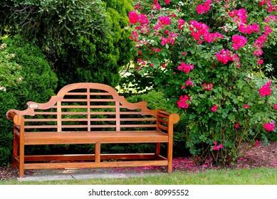 Wooden Bench in a Botanical Garden