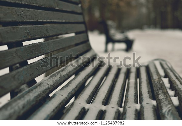 wooden bench in closeup in winter city park