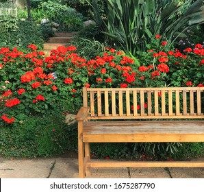 Wooden bench in a flowers park, Doi Ang Khang, Thailand