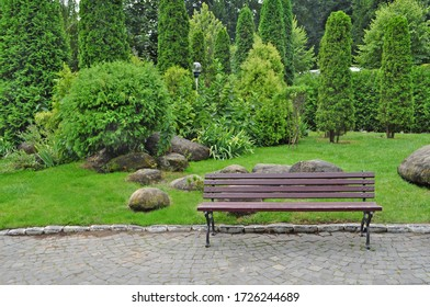 Wooden bench in nature scene. Park benches in the city. Bench in the square. Landscaping.