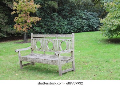 A wooden bench on a bright green grass amongst shrubs and trees with no sky