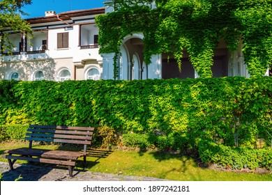 Wooden bench on the garden with green leaf wall background and an old villa with Mediterranean architecture in the background.