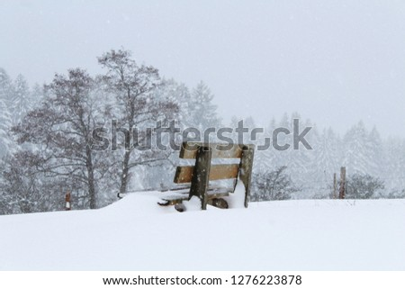 wooden-bench-on-snowy-winter-450w-127622