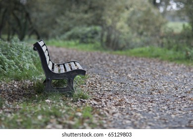 Wooden bench in the park in autumn